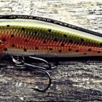 Major Craft Zoner Jerk Bait - Rainbow