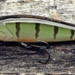 Major Craft Zoner Jerk Bait - Perch