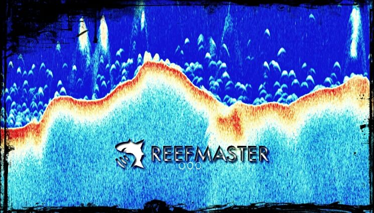 ReefMaster-Software