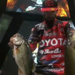 Mike Iaconelli