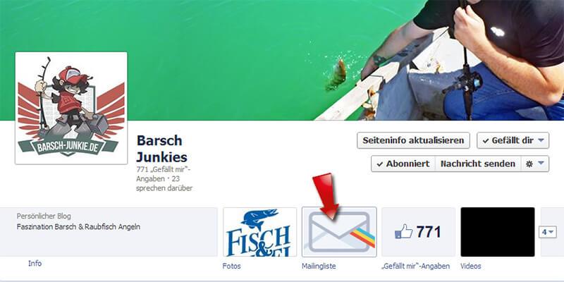 mailingliste-auf-facebook