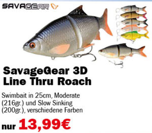 savage_gear-line-thru-roach