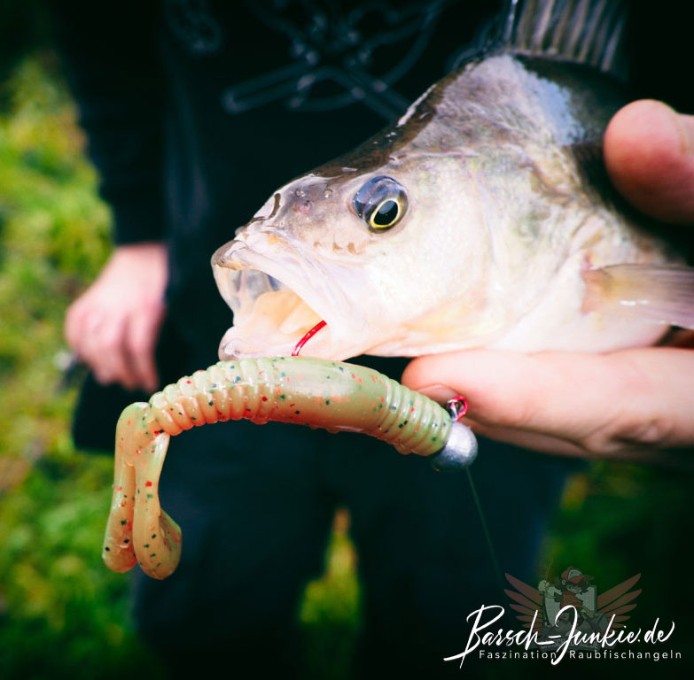 black flagg heartbreaker tackletest perch