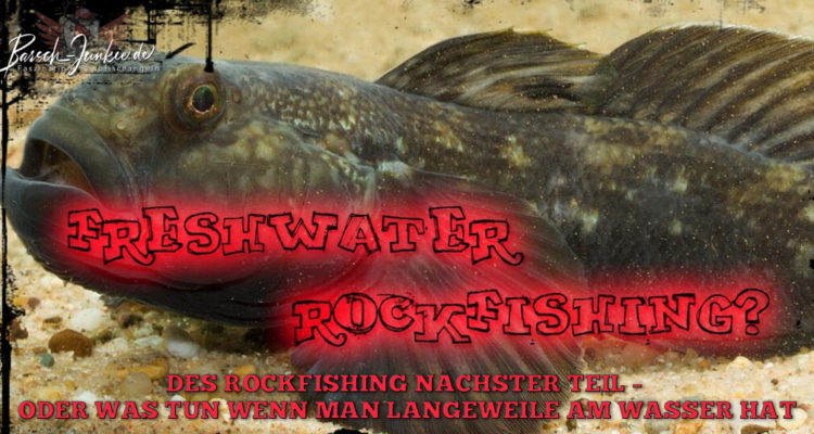 rockfishing naechster teil title