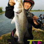 thai street fishing plus baitcast