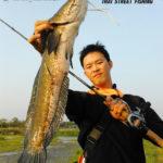 thai street fishing plus snakehead
