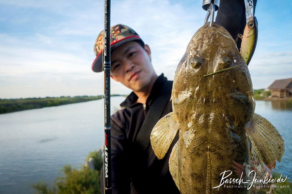 thai street fishing plus snakhead volkey bfs 1