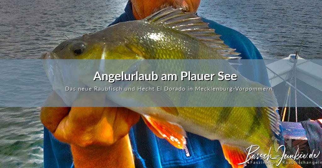 Unser Angelurlaub am Plauer See im schönen Mecklenburg-Vorpommern