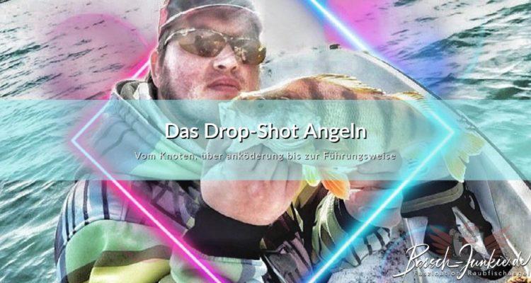 Das Drop-Shot Angeln - Einfach Erkärt